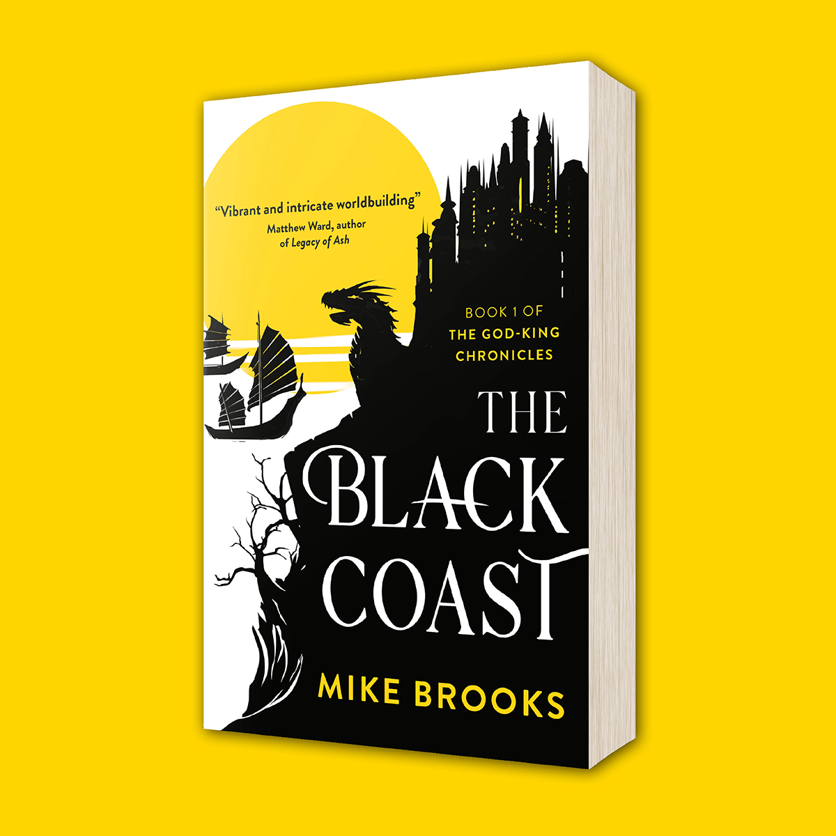 Paperback copy of The Black Coast by Mike Brooks
