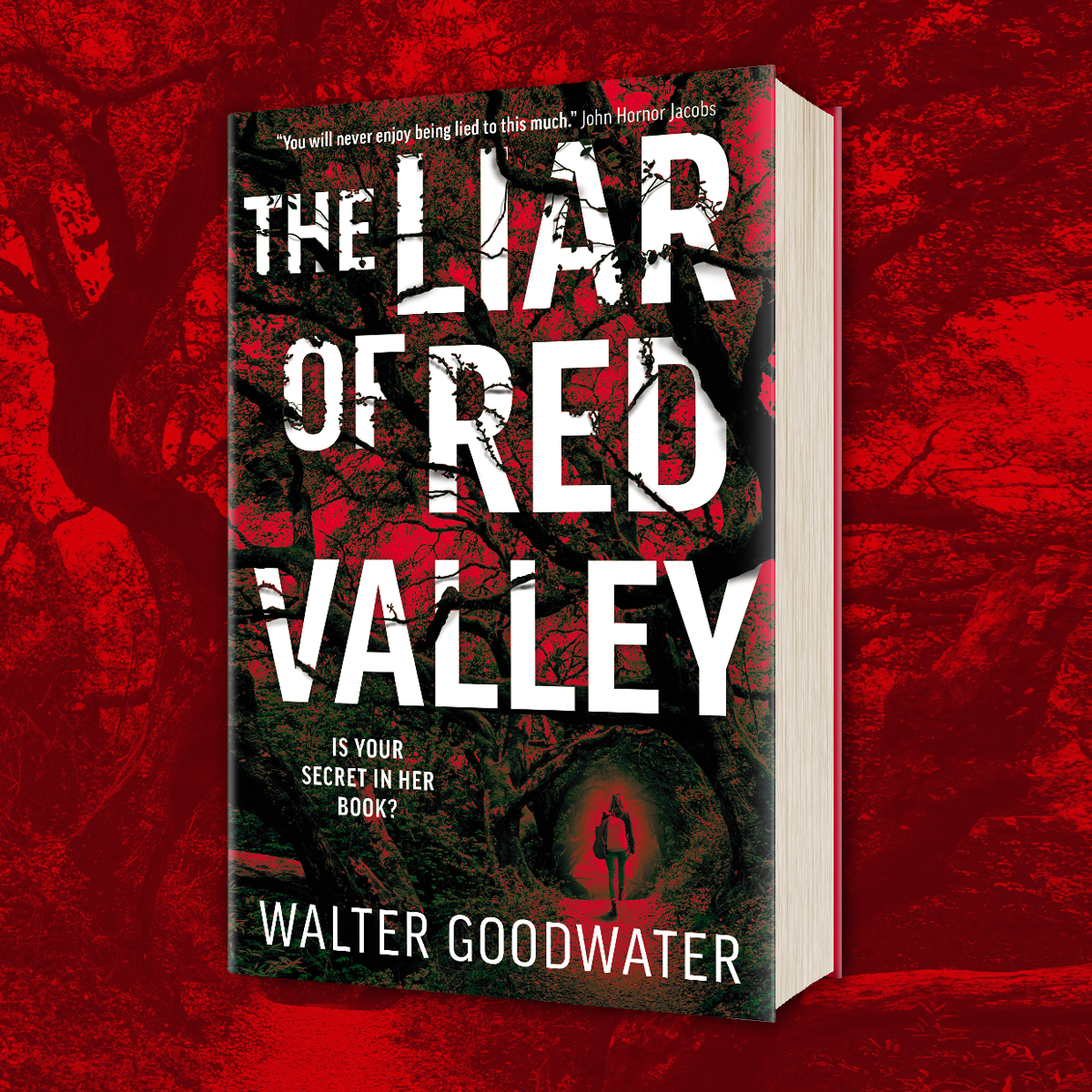 OUT NOW: The Liar of Red Valley by Walter Goodwater!